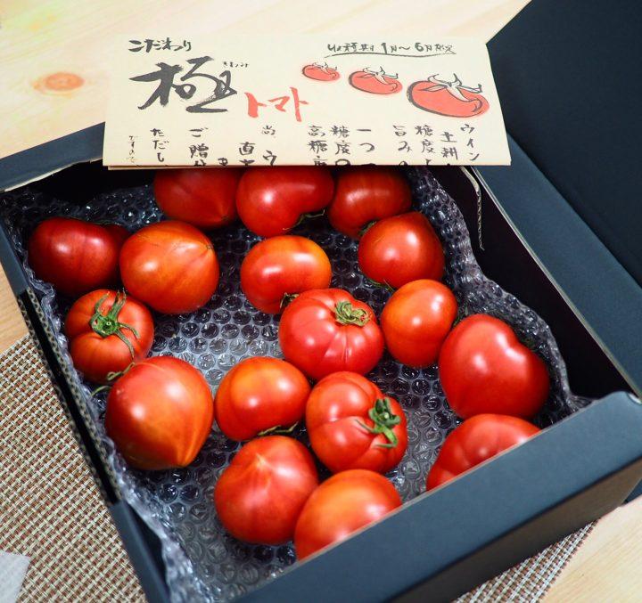 みやこ町勝山のウイングファームさんのトマト