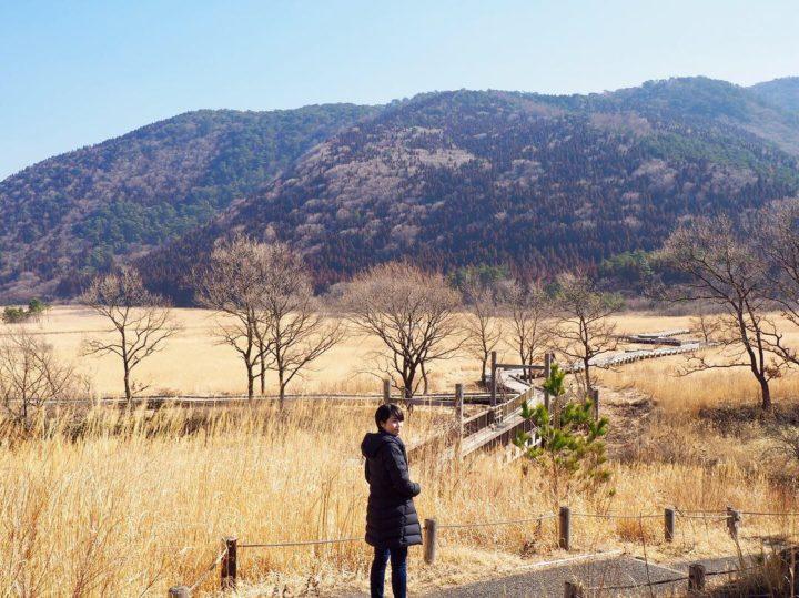 2月のタデ原湿原