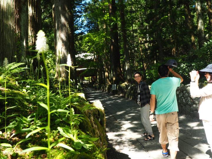 長野旅行4日目、5日目【駒ヶ根散歩、ふもとっぱらキャンプ場】