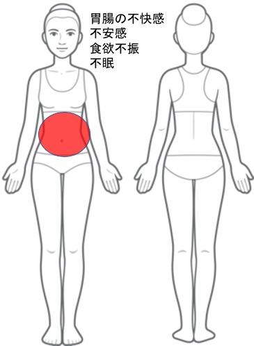 【改善症例】不安感・胃腸の不快感・食欲不振・不眠