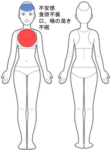 【改善症例】不安感・食欲不振・口、喉の渇き