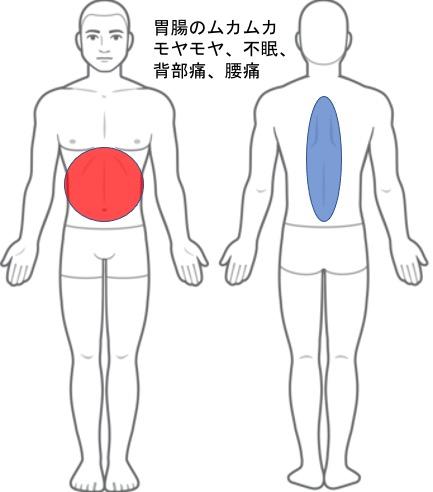 【改善症例】背部、腰痛、胃・腸の調子が悪い