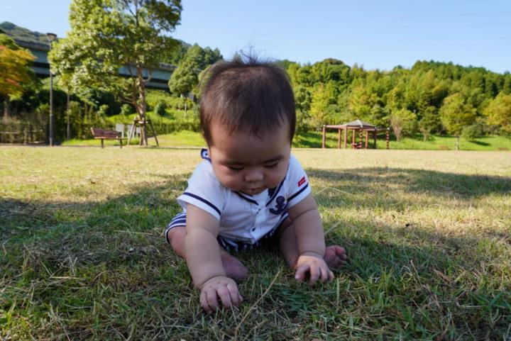 長野緑地へ